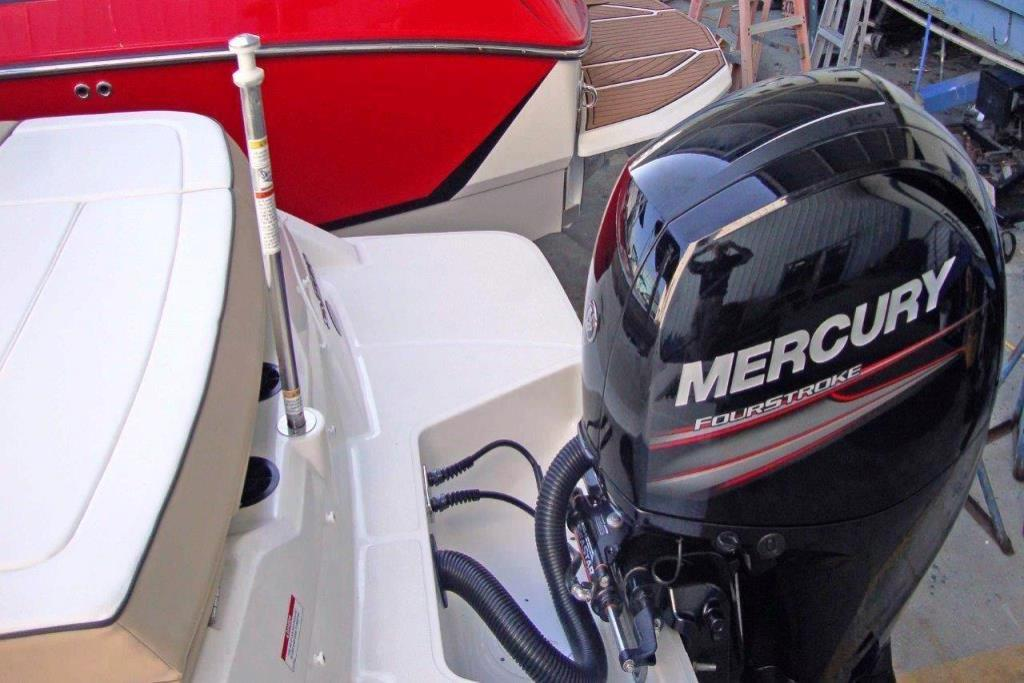 2015 Sea Ray 21 SPX Outboard Image Thumbnail #9