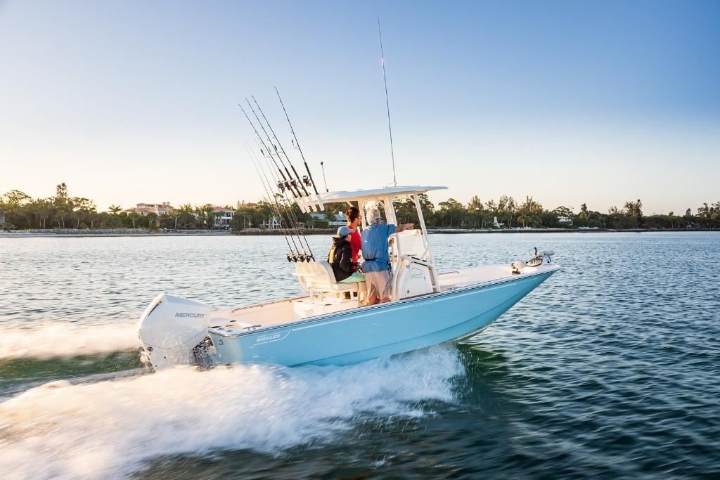 2021 Boston Whaler                                                              210 Montauk Image Thumbnail #1
