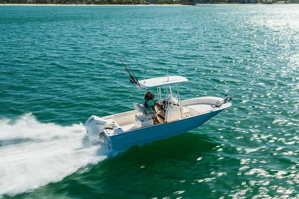 2021 Boston Whaler                                                              210 Montauk Image Thumbnail #4