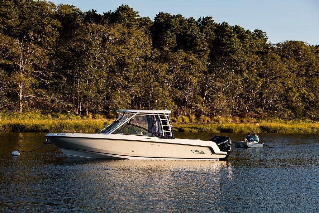 2021 Boston Whaler                                                              270 Vantage Image Thumbnail #1