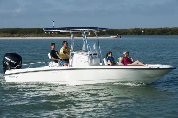 2011 Boston Whaler 230 Dauntless Image Thumbnail #0