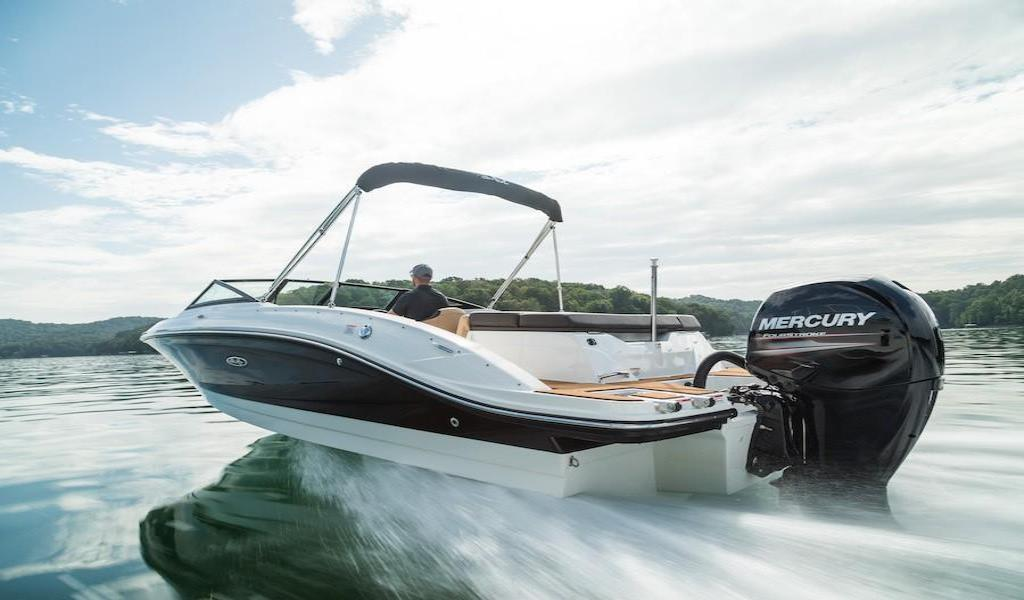 2019 Sea Ray SPX 210 Outboard Image Thumbnail #3