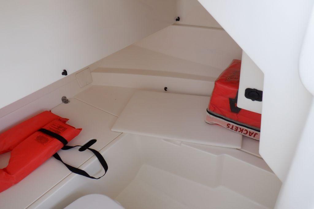 2019 Sea Ray SDX 250 Outboard Image Thumbnail #22