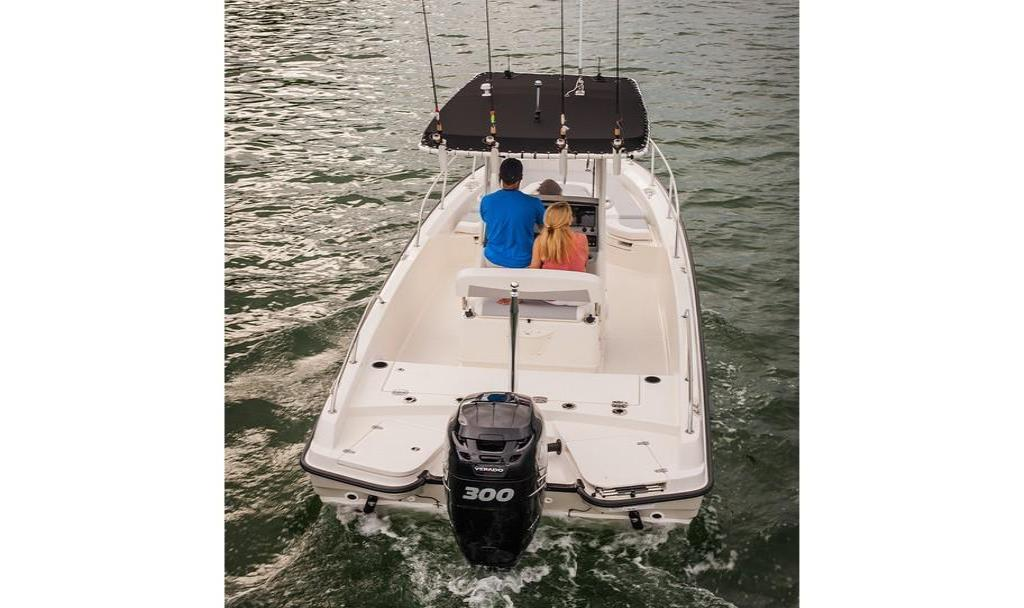 2019 Boston Whaler 240 Dauntless Image Thumbnail #16