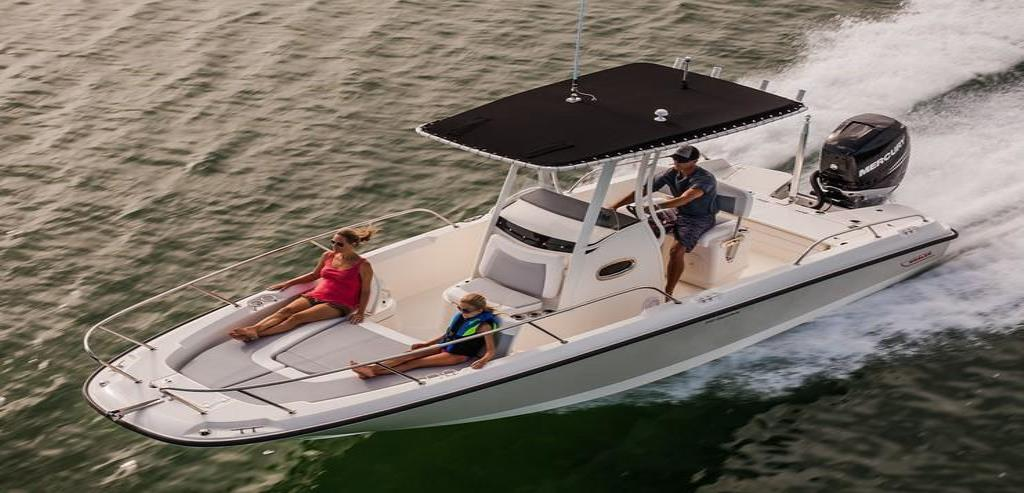 2019 Boston Whaler 240 Dauntless Image Thumbnail #11