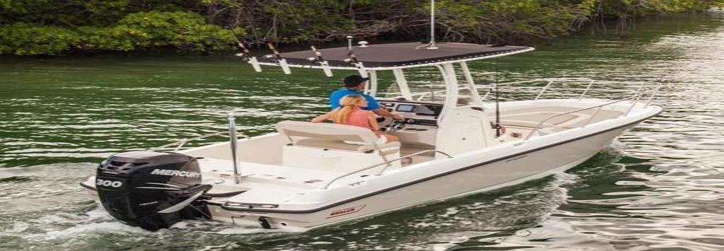 2019 Boston Whaler 240 Dauntless Image Thumbnail #14