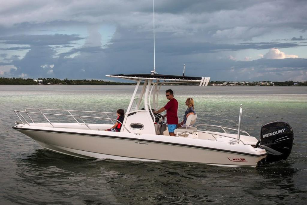 2019 Boston Whaler 240 Dauntless Image Thumbnail #12