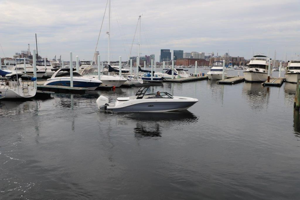 Photo 9 for 2020 Sea Ray SPX 230 Outboard