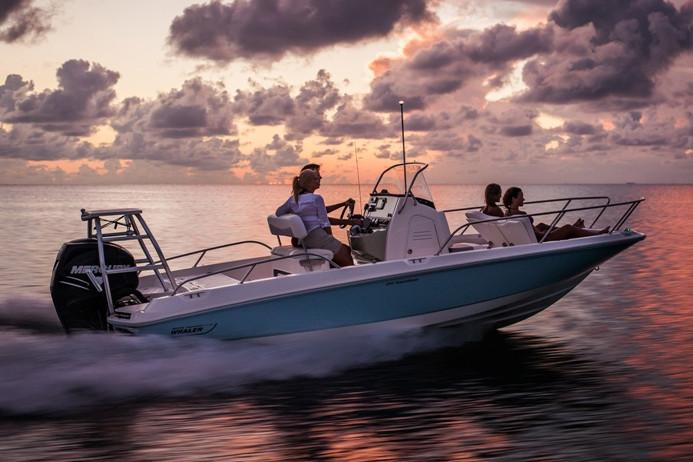 2021 Boston Whaler                                                              210 Dauntless Image Thumbnail #3