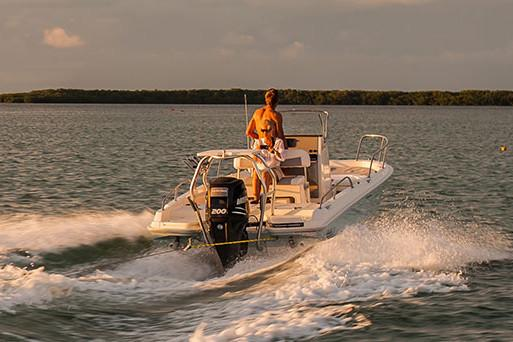 2021 Boston Whaler                                                              210 Dauntless Image Thumbnail #2