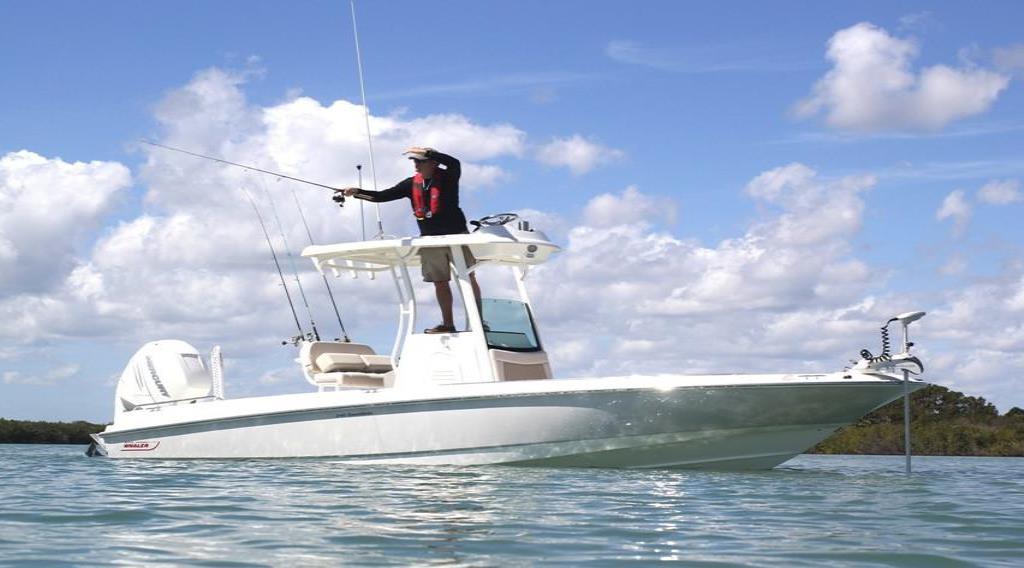 2020 Boston Whaler 240 Dauntless Pro Image Thumbnail #1