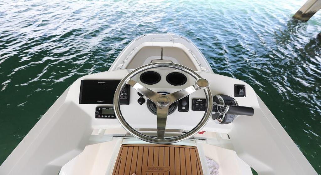 2020 Boston Whaler                                                              240 Dauntless Pro Image Thumbnail #5