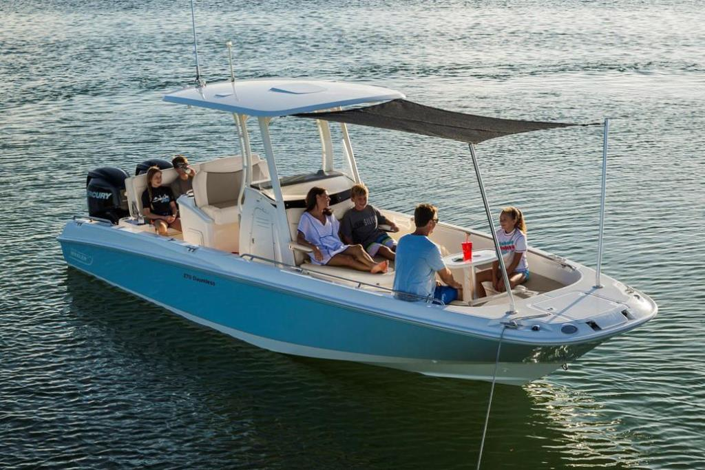 2021 Boston Whaler                                                              270 Dauntless Image Thumbnail #3
