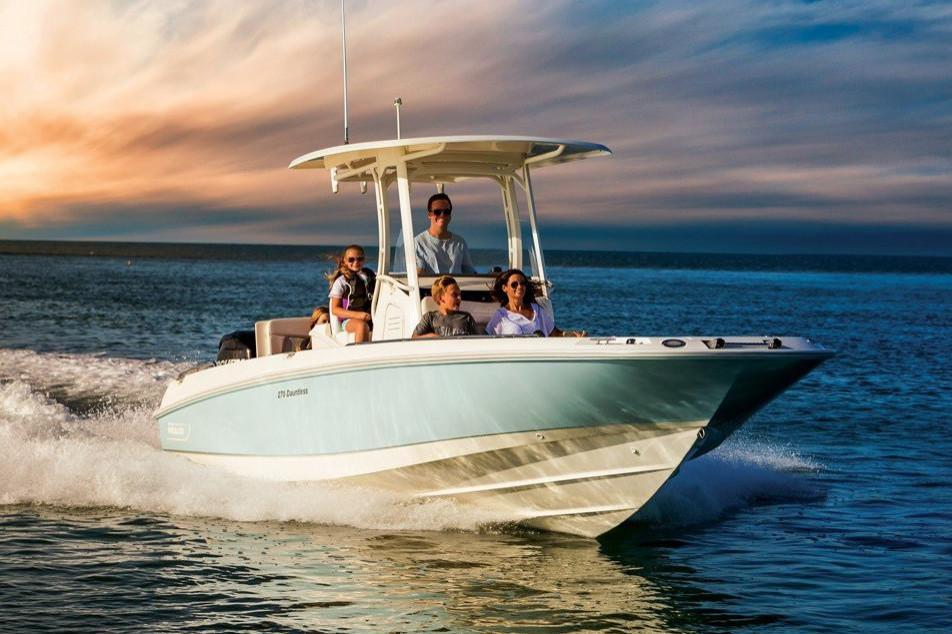 2021 Boston Whaler                                                              270 Dauntless Image Thumbnail #0