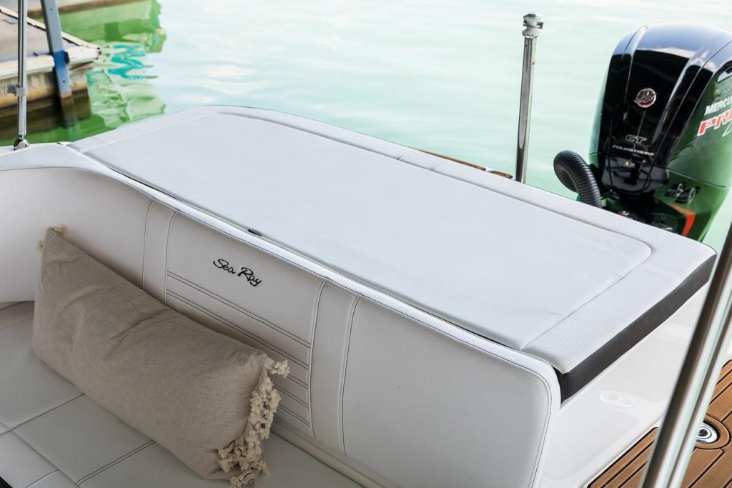 2021 Sea Ray                                                              SPX 190 OB Image Thumbnail #14